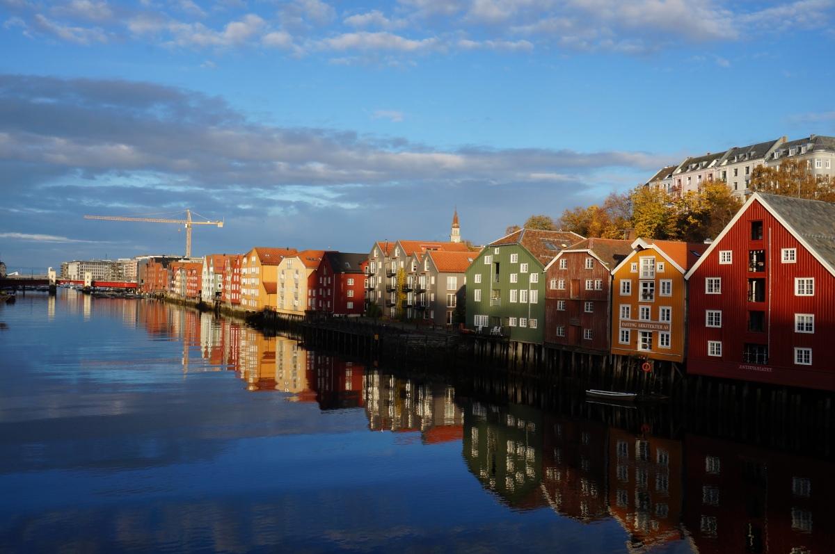 [ノルウェーブログ]ノルウェー語の難易度とは?これからノルウェー語を勉強される方へ
