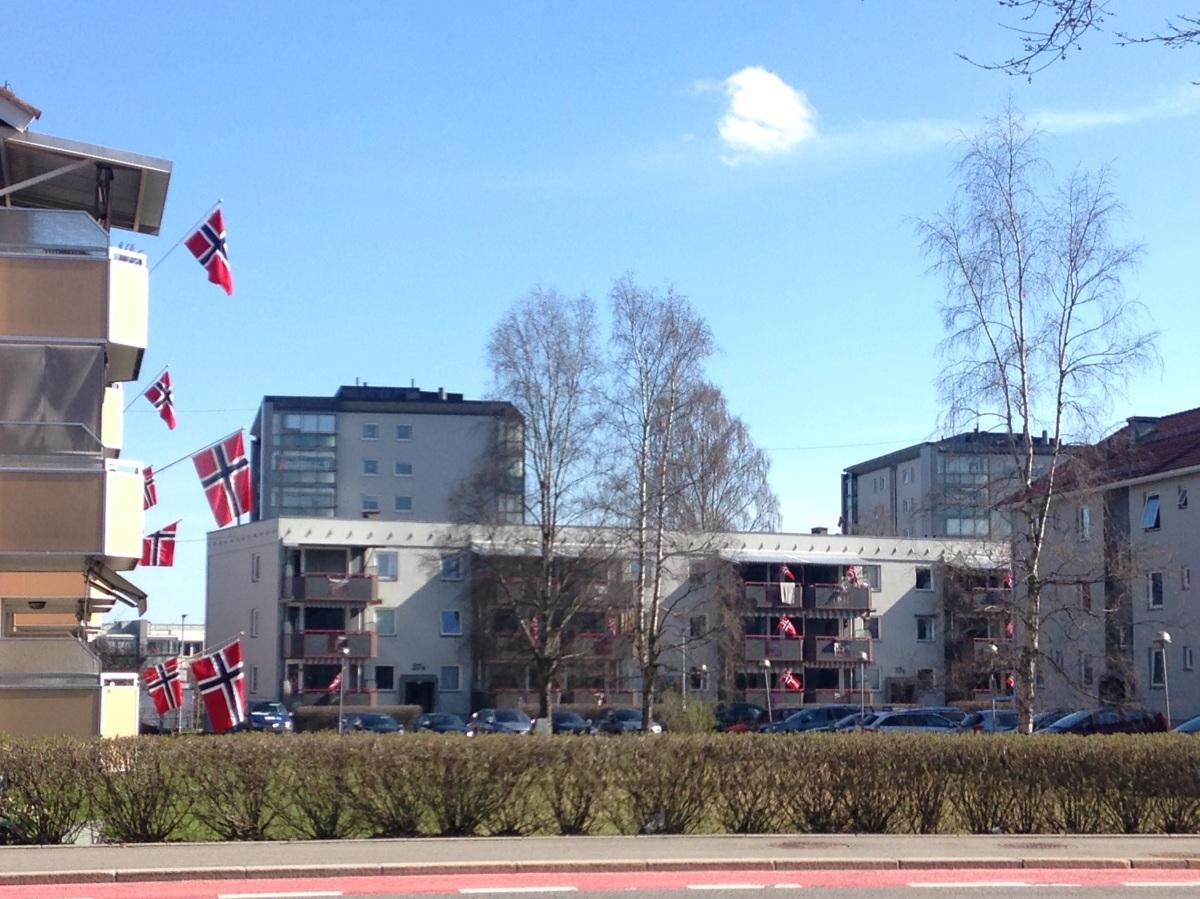[ノルウェーブログ]ノルウェー人は国旗大好き!?